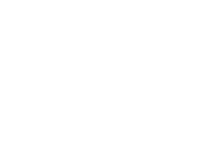 Stag TYOロゴ